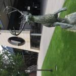 John Deere Forum